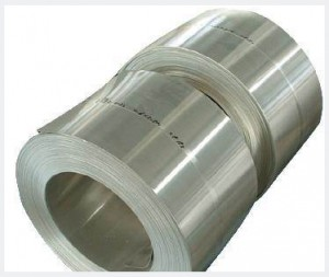 Invar Strip/Invar Alloy Strip