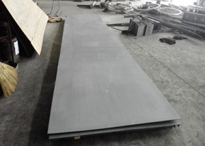 Hastelloy C22 Sheet/Plate