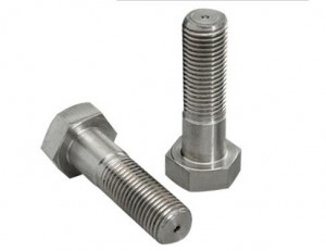 Hastelloy C22 Bolts